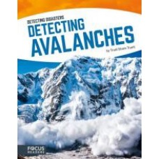 Detecting Avalanches -  Detecting Disasters