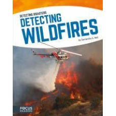 Detecting Wildfires -  Detecting Disasters