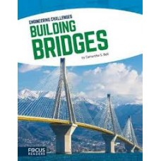 Building Bridges - Engineering Challenges
