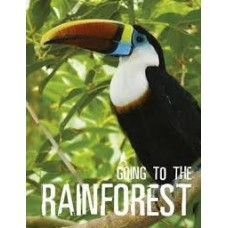 Going To The Rainforest