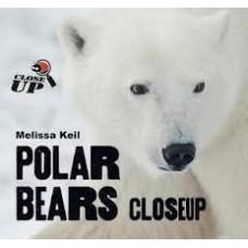 Polar Bears - Close Up