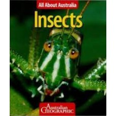 Insects - All About Australia
