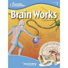 Brain Works - Nervous System