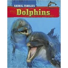 Dolphins - Animal Families