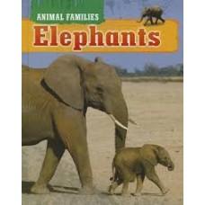 Elephants - Animal Families