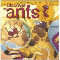 Discover The Ants