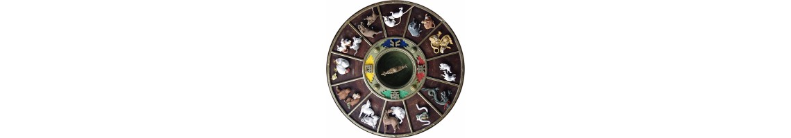 The Year of the .......... Chinese Zodiac stories
